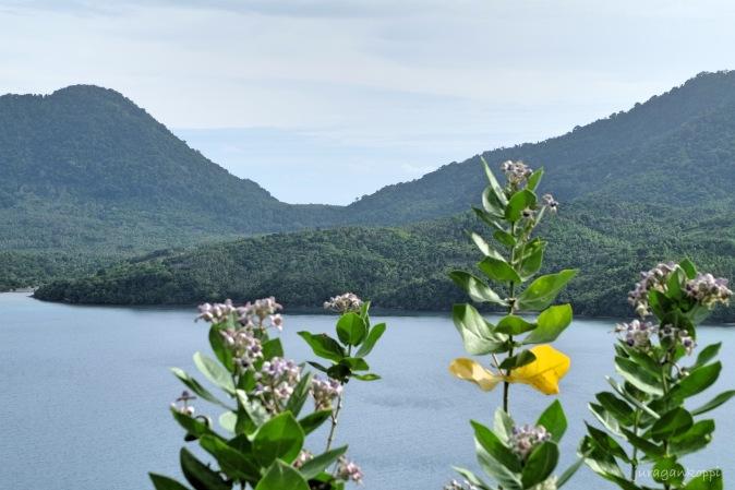 Bukit Sabang photo spot